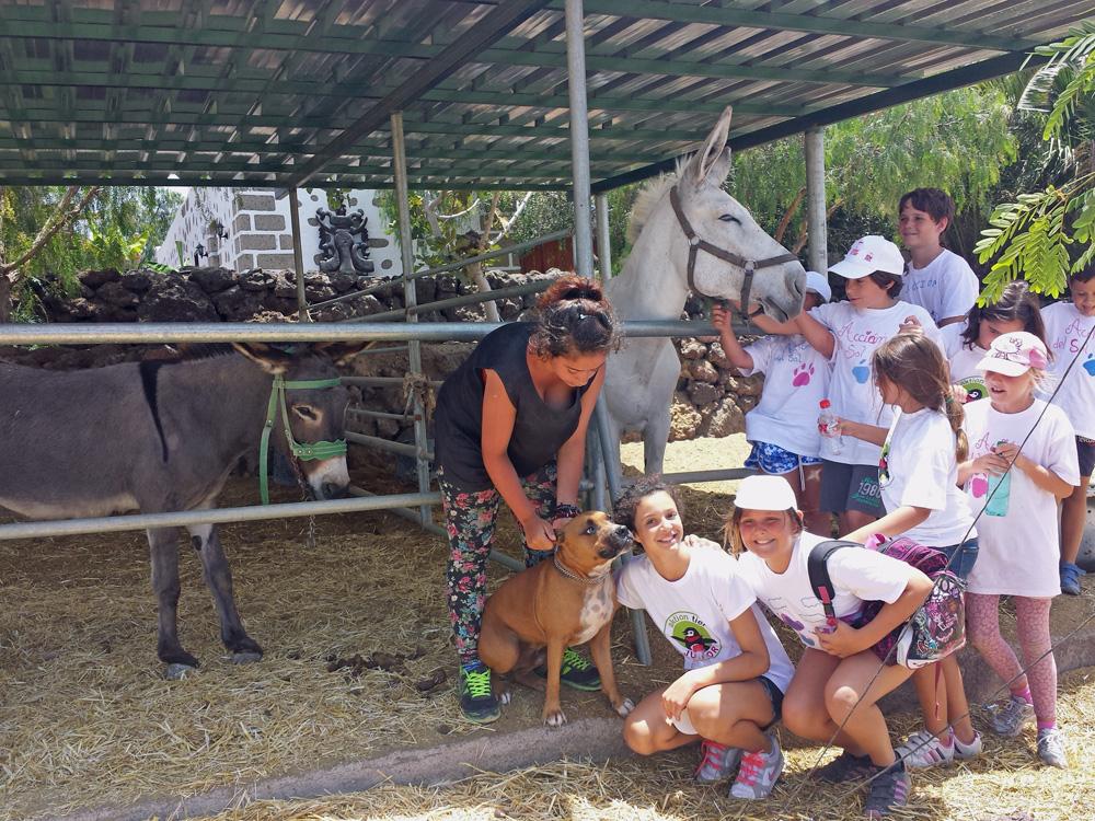 Ferienprogramm im aktion tier Tierheim Teneriffa