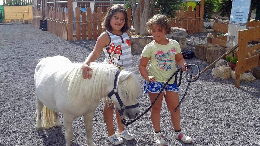 Kinder können im Tierheim Teneriffa einen verantwortungsvollen Umgang mit Tieren lernen.