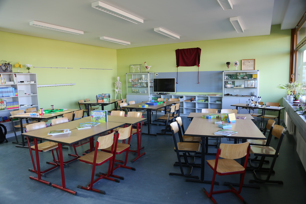 Tierschutzzimmer in der Berliner Grundschule 'Am Hohen Feld'