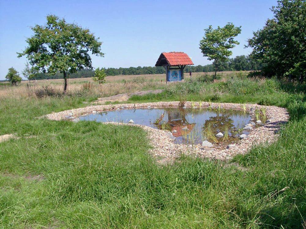 Naturlehrpfad und Biotop