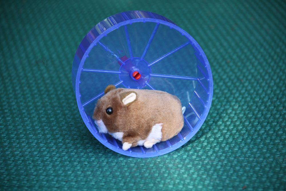 Hamsterrad.