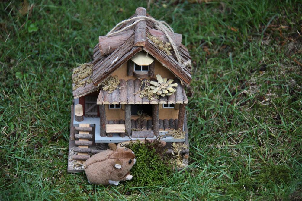 Hamsterhaus.