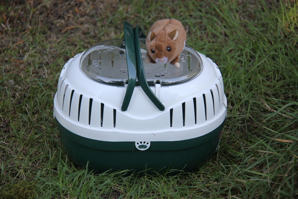 Hamstertransportbox.