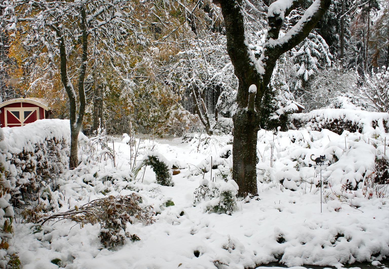 Der Tierfreundliche Garten Im Winter Aktion Tier Menschen Für